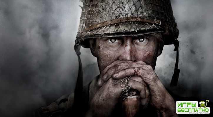 Call of Duty: WW 2 требует интернет
