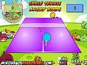 Теннис злых птиц
