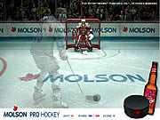 Профессиональный хоккей