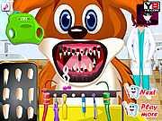 Животные и зубы