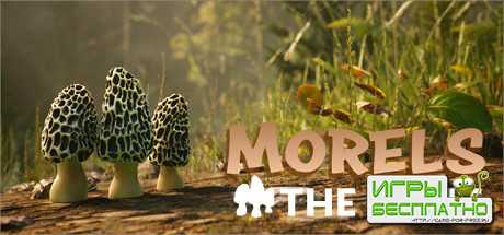 Природа Северной Америки в трейлере симулятора грибника Morels: The Hunt